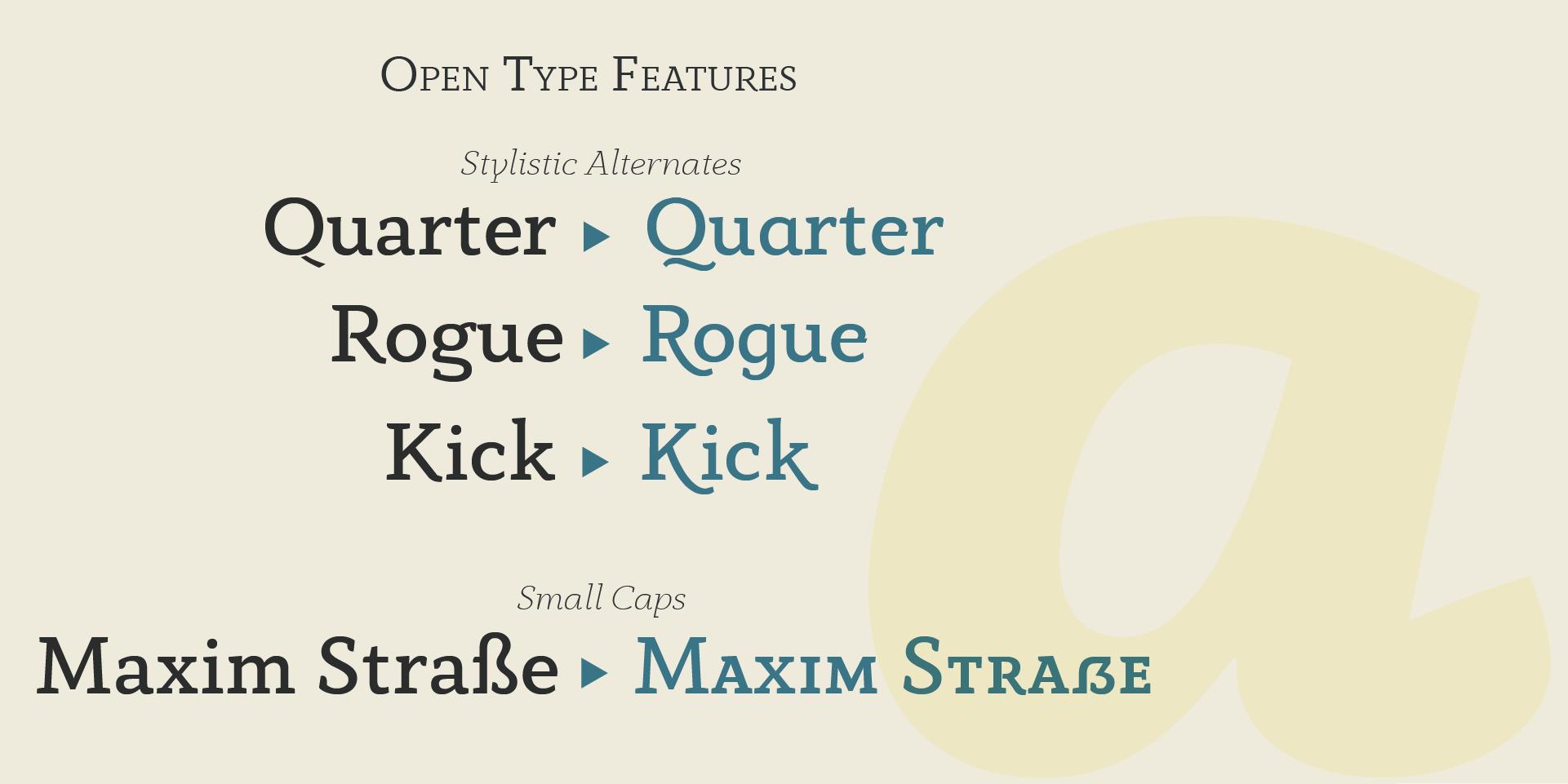 anaphora typeface by zetafonts